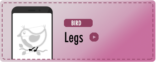 Bird Legs Badge